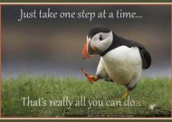 One step at a time…